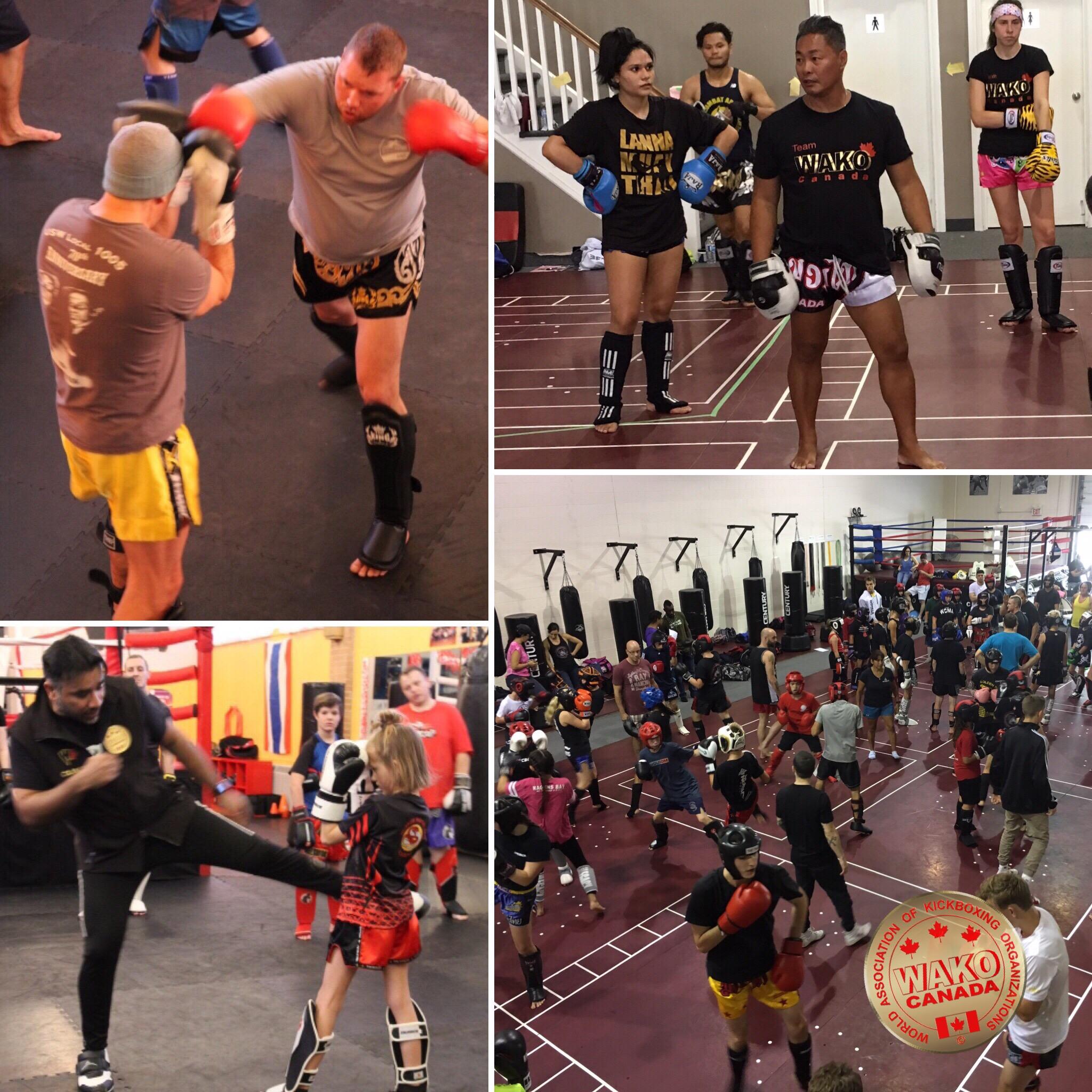 BC Kickboxing Seminars